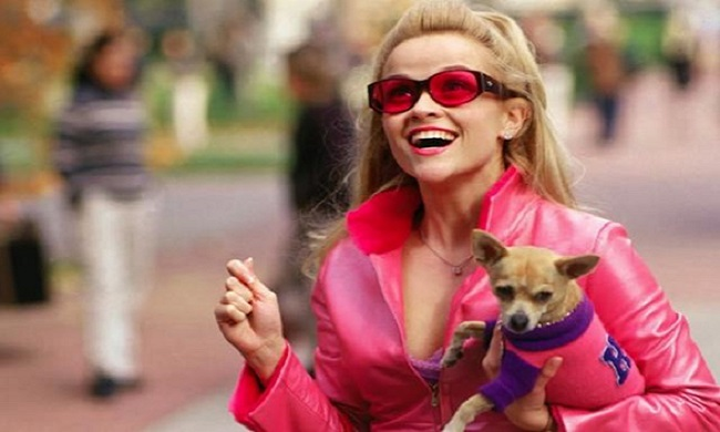 10 Important Life Lessons Elle Woods Taught Us